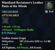 Woodland Reclaimer's Leather Pants of the Winds