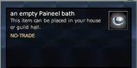 An empty Paineel bath