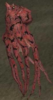 File:Race octopus.jpg