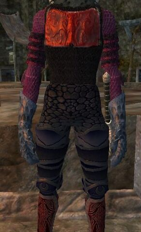 File:Doomseer leggings worn.jpg