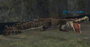 A river crocodile