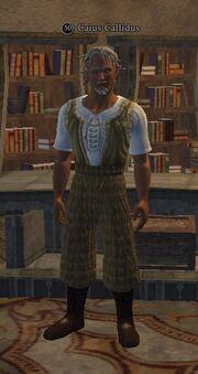 Caius Callidus