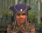 Sky Gazer's Cap worn