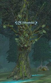 Tilberbous