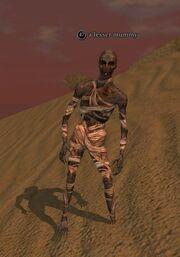 A lesser mummy