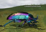 A mutated luclinite beetle