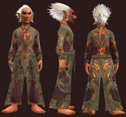 Crimson Star Robe (Equipped)