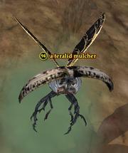 A teralid mulcher