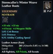 Stormcaller's Winter Weave Leather Boots