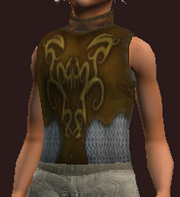 Ritualistic Chestguard of D'Lere (Equipped)