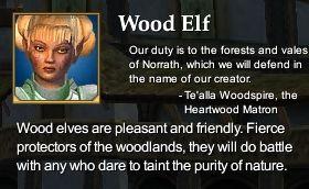 File:Wood Elf (Character Race).jpg