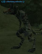 A Blackfang ambusher