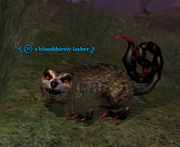 A bloodthirsty lasher