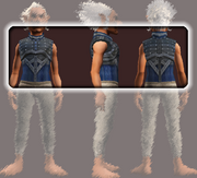 Blood Lord's Wrathbound Breastplate (Equipped)