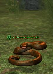 A crimson constrictor