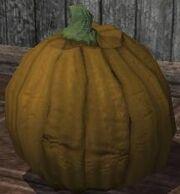 A pumpkin (Visible).jpg