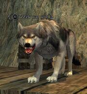 A Zek war wolf
