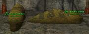 Slug (Guardian) Placed