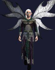 Shiny Metallic Robe (Worn)