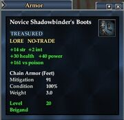 Novice Shadowbinder's Boots
