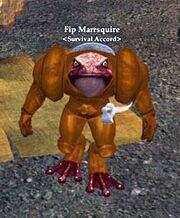 Fip Marrsquire