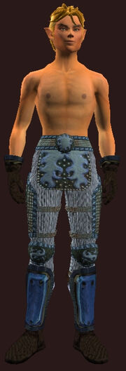 Cloth Armor of the Sage(Worn)