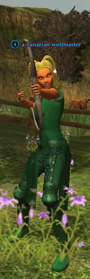 A Tunarian wolfmaster (wood elf)