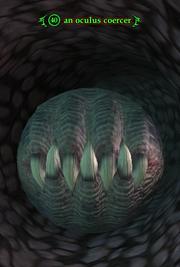 An oculus coercer