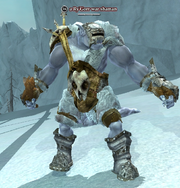 A Ry'Gorr war shaman