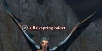 A Balespring raider
