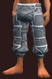 Sensei's Leg Wraps of the Fightmaster (Equipped)