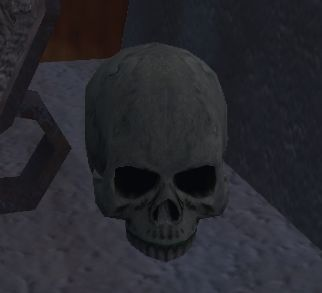 File:Garanel's Scorched Skull in your house.jpg