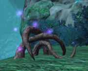 Talon Roots