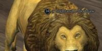A highland bloodpaw