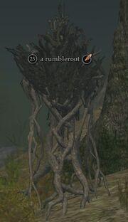 A rumbleroot