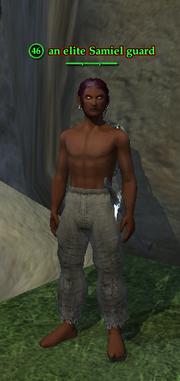 An elite Samiel guard