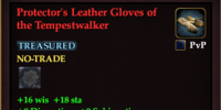 Protector's Leather Gloves of the Tempestwalker