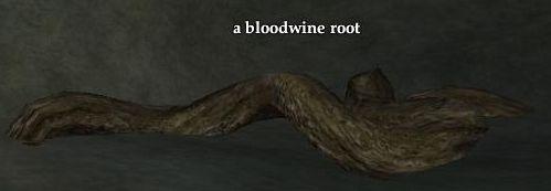 File:Bloodwine root.jpg