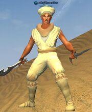 A Raj'Dur raider