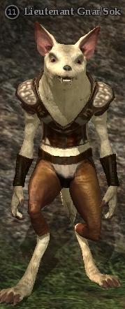 Lieutenant Gnar'Sok
