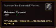 Bracers of the Elemental Warrior