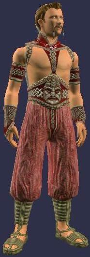 Triumphant Hero (Armor Set) (Visible, Male)