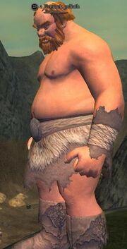 A Firerock goliath