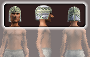 Spiritualist's Coif (Equipped)