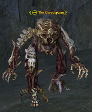 The Corpuspasm