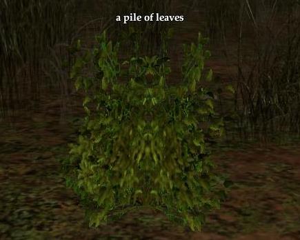 File:Pile of leaves (Zek).jpg