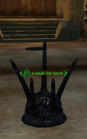 A small life leech