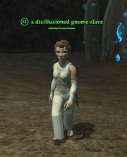 A disillusioned gnome slave