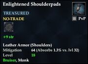 Enlightened Shoulderpads