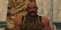 Karnov the Mercenary